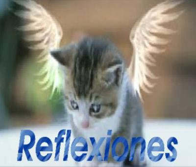 20080309094313-reflexiones-.jpg